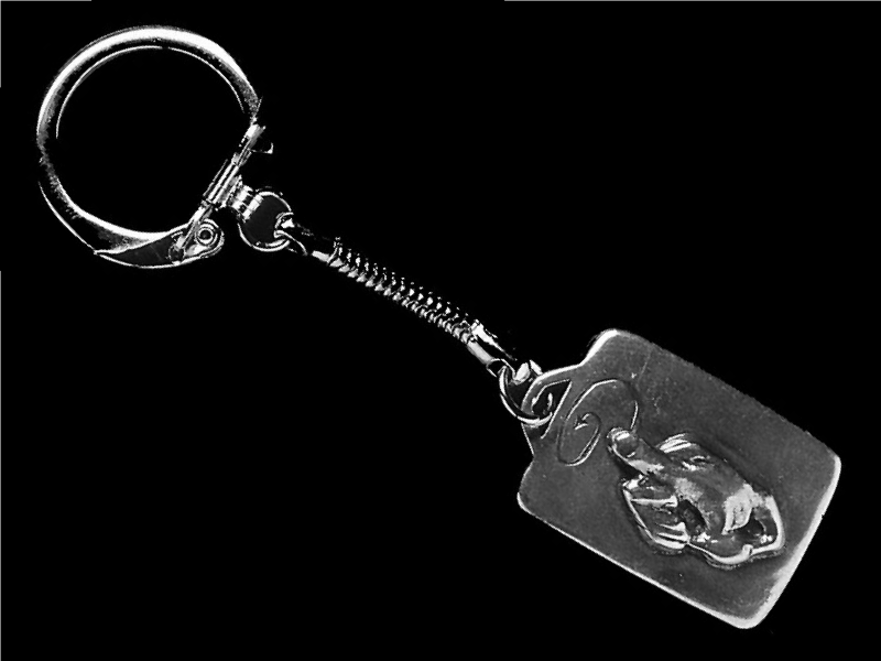 keychain_other_one